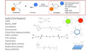 Click chemistry tools- OrganoLinx